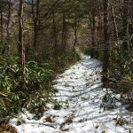 IMG_2760_雪道